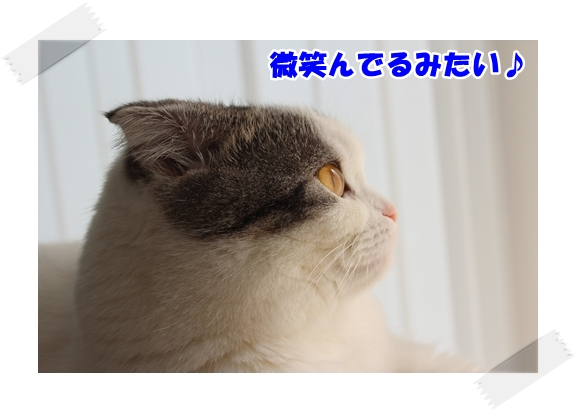 2_20121106233302.jpg