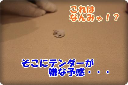 3-003_20120603003221.jpg