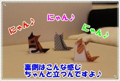 3_20120604235649.jpg