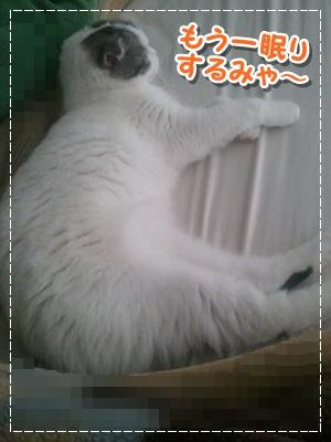 3_20120712194151.jpg