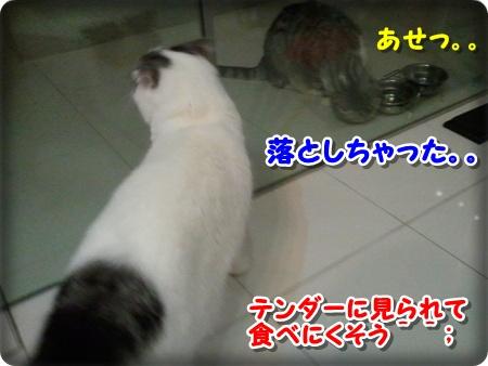 3_20121007001719.jpg