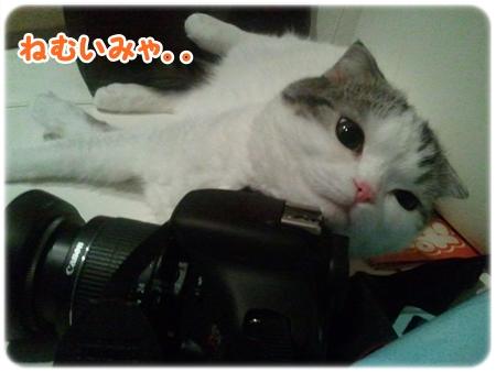 3_20121027015519.jpg
