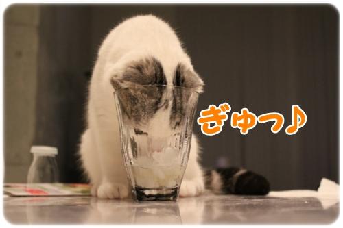 3_20121120020158.jpg