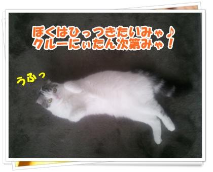 4-004_20121108232911.jpg