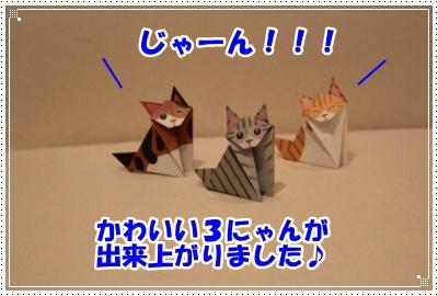 4_20120604235648.jpg