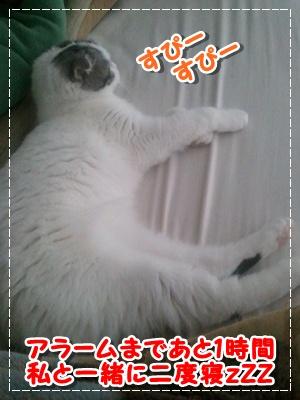 4_20120712194150.jpg