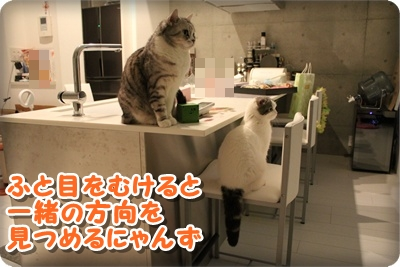 4_20120722014748.jpg