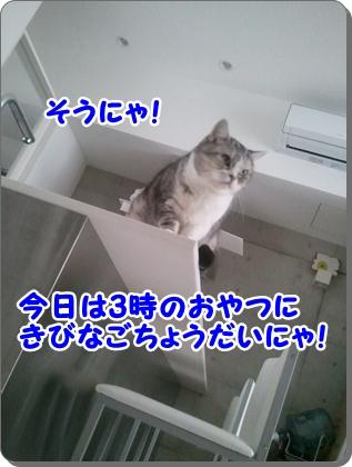 4_20120813225417.jpg