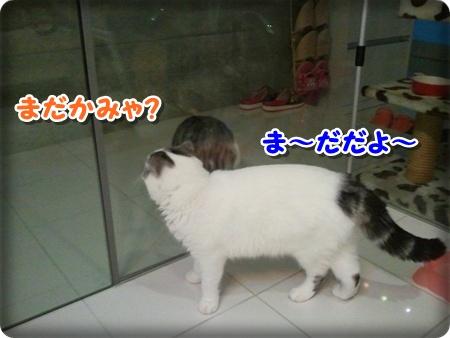 4_20121007001718.jpg