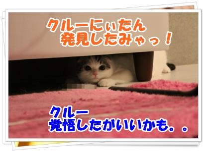6-006_20120616183912.jpg