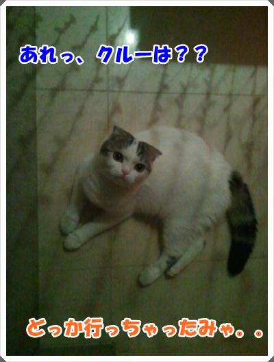 6-006_20121027013709.jpg