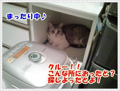 6_20120508004957.jpg