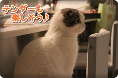 6_20120722014747.jpg