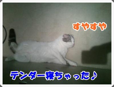 6_20120727022856.jpg
