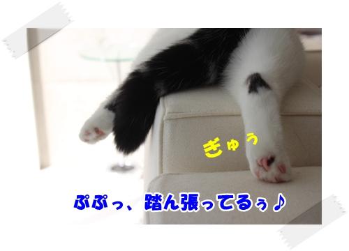 6_20121106233300.jpg