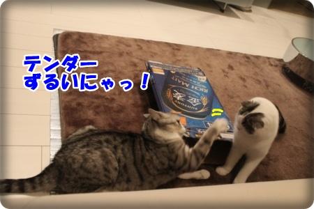 7-006_20121110005045.jpg