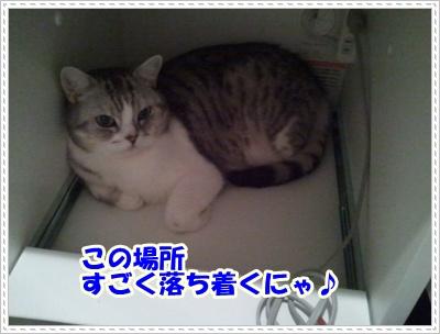 7_20120508004957.jpg