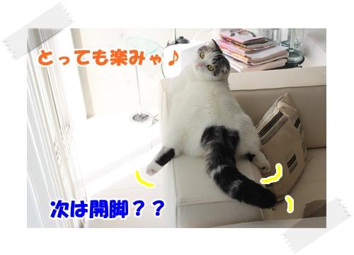 7_20121106233309.jpg