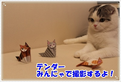 8_20120604235707.jpg