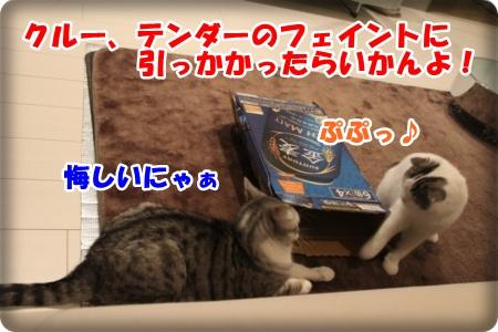 9-008_20121110005102.jpg