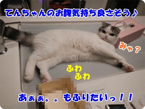DSCN0192-002.jpg