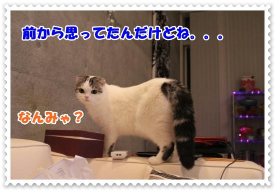 IMG_2561-001.jpg