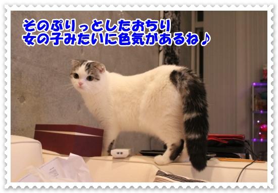 IMG_2562-002.jpg