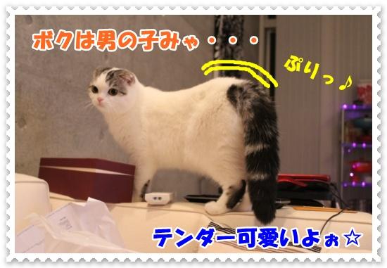 IMG_2563-003.jpg