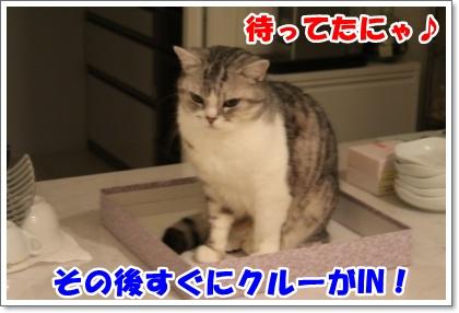 IMG_4105-004.jpg