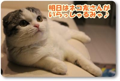 IMG_4974-004.jpg