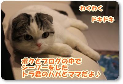 IMG_4977-006.jpg