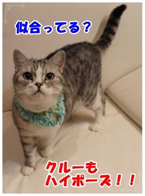 IMG_5862-008.jpg