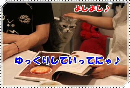IMG_5969-003.jpg