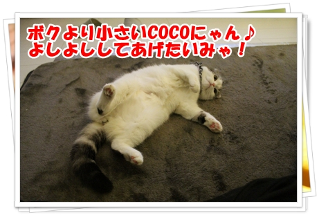 IMG_7505.jpg