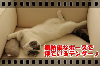 IMG_7689-002.jpg