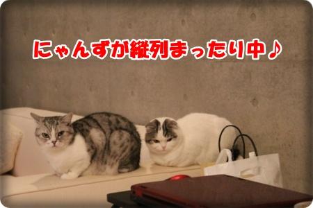 IMG_8956-003.jpg