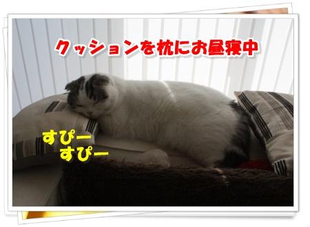 IMG_9376-001.jpg