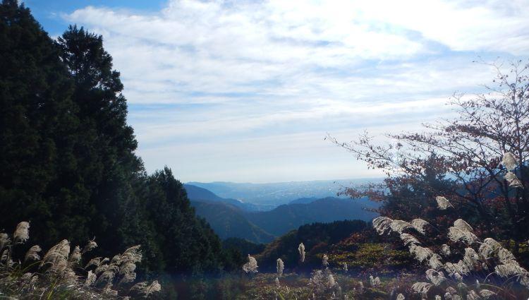 大野山06