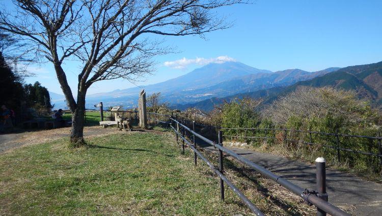 大野山11