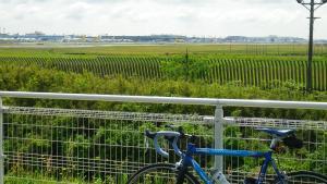 016さくらの山から成田空港
