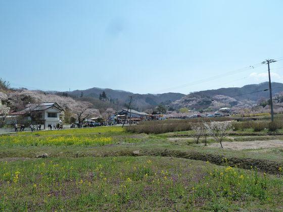 ようこそ福島の桃源郷へ