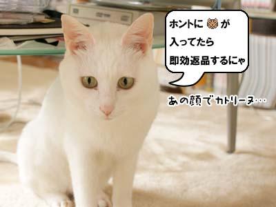cat3896