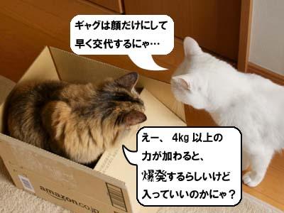 cat3897