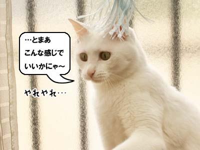 cat3913