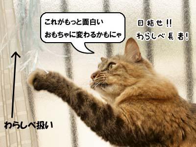 cat3918