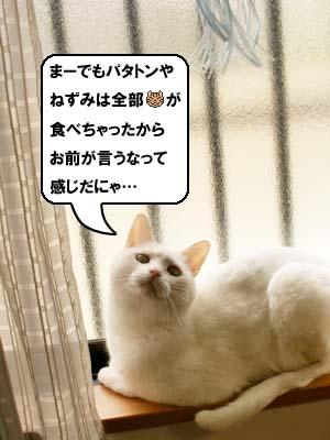cat3920