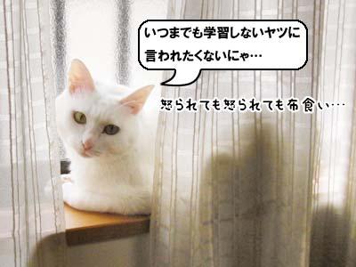 cat3930