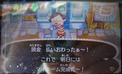 035_20121108194258.jpg