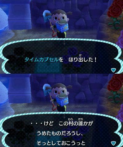 037_20121226200908.jpg