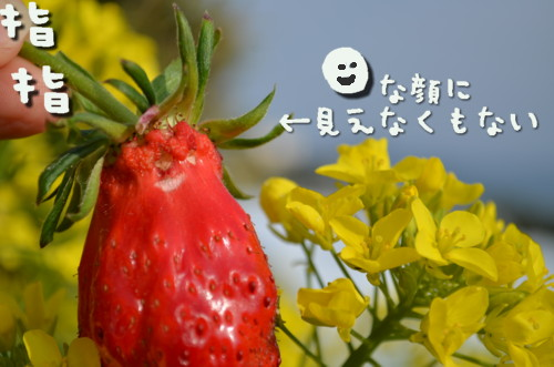 DSC_5123.jpg